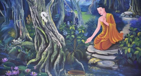 test buddha